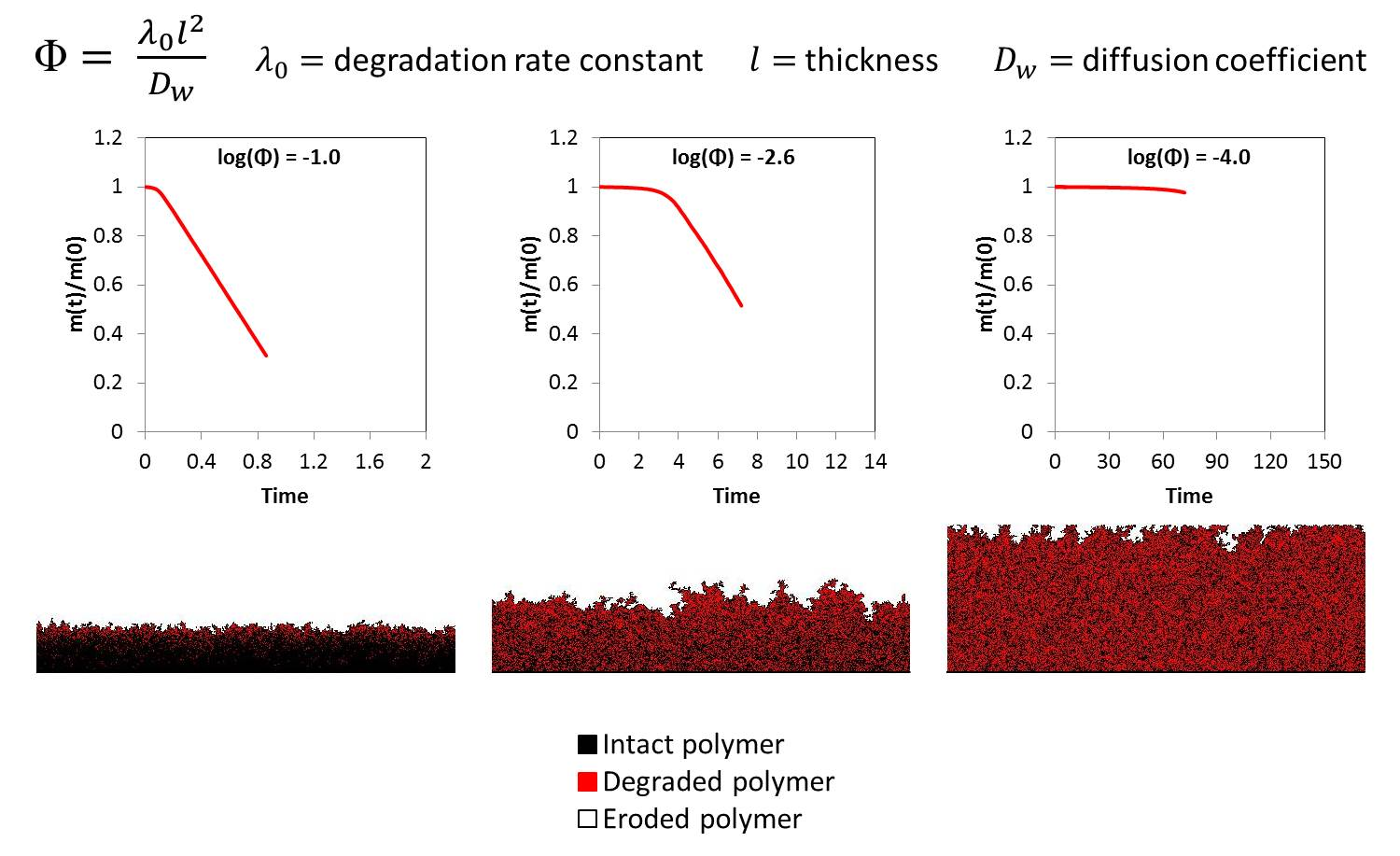 polymer degradation Abstract this report is concerned with three distinct aspects of polymer degradation and stability with the general aim of the production of materials of improved stability through.